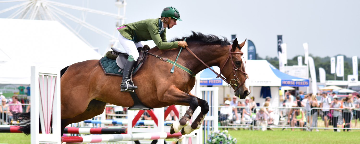 Cheshire County Show 2017 Photos Banner