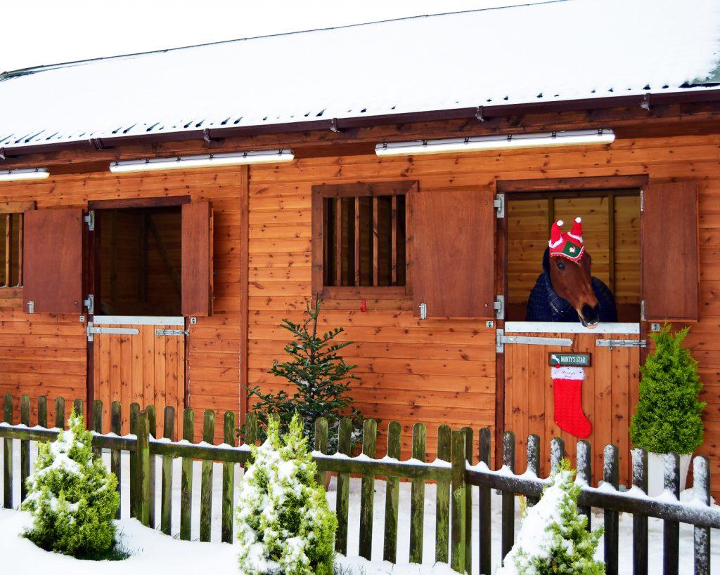 Christmas Snow 2017