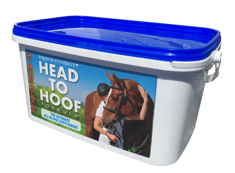 Head to Hood available at equinesynergy.net